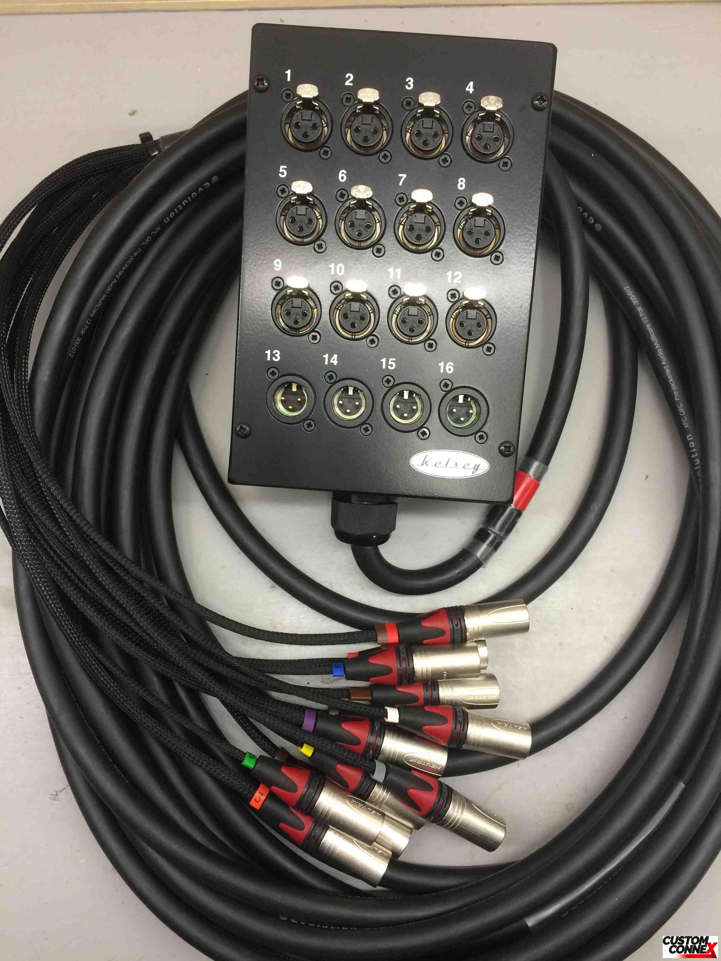 16 Channel Stage Box - Two Tails